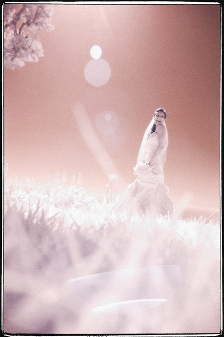 свадебное ИК фото