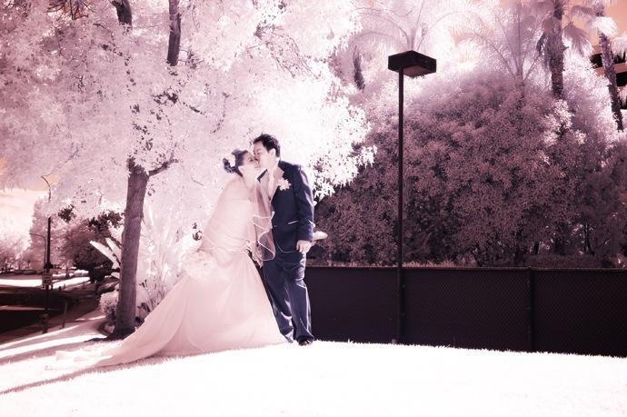 свадебная инфракрасная фотография