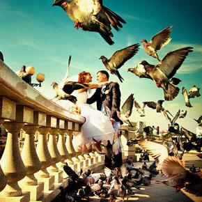 Что должен уметь свадебный фотограф?